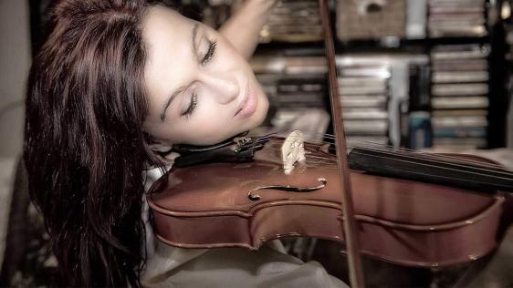 Cecilio CVN-300 Solidwood Ebony Fitted Violin