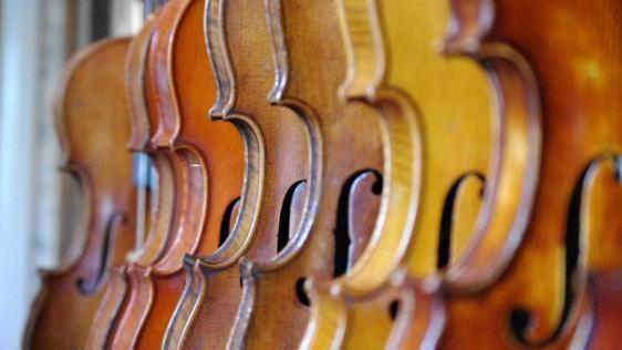 Fiddle vs. Violin: What's the Difference?