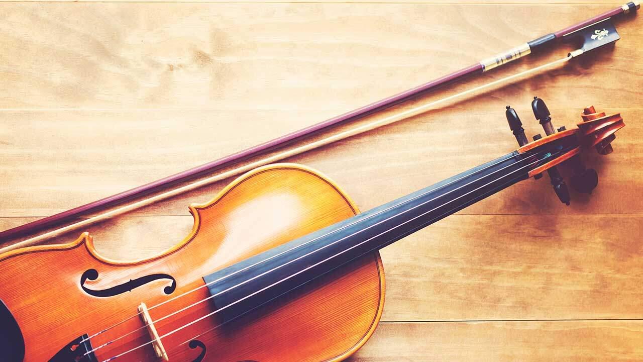 Top 5 Best Violin Bows