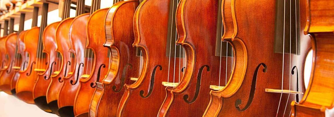 The Best Violin Brand for You