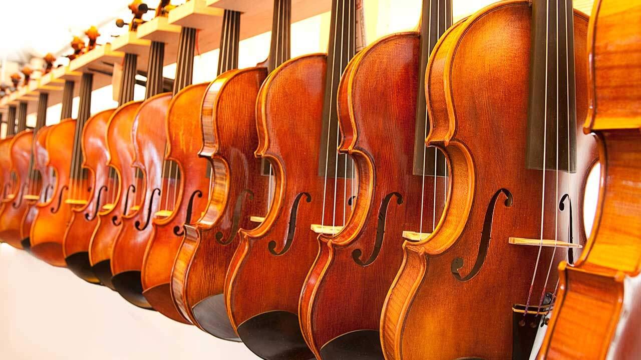 Best Violin Brand