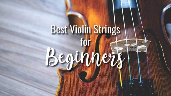 Best Violin Strings for Beginners