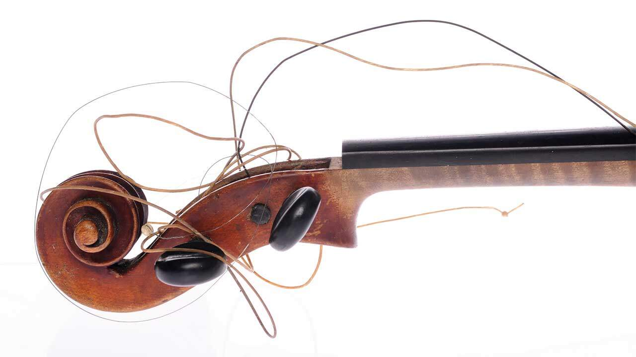 violin brands to avoid new violinist