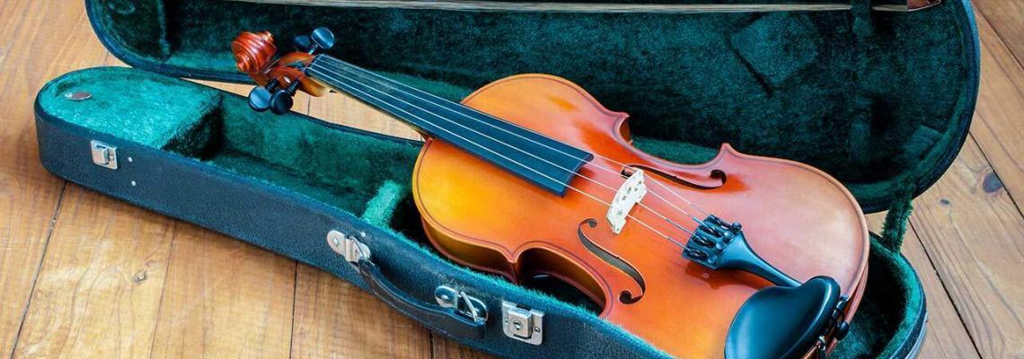 best violin case