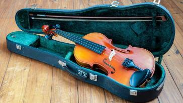 best violin case