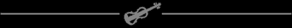 electric violin spacer